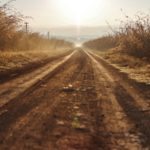 Dirt Road in the Morning